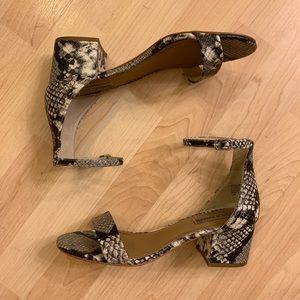 Snakeskin Steve Madden Sandals